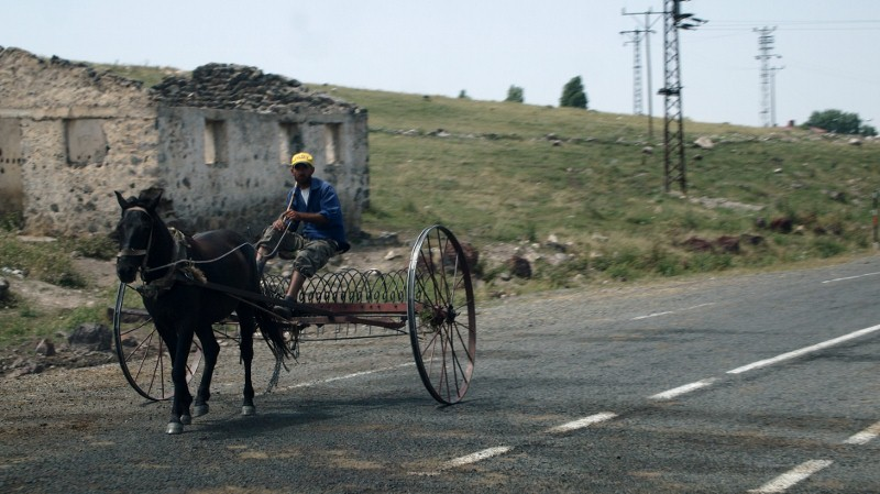 Erzurum, Turquía, Turkey, donkey